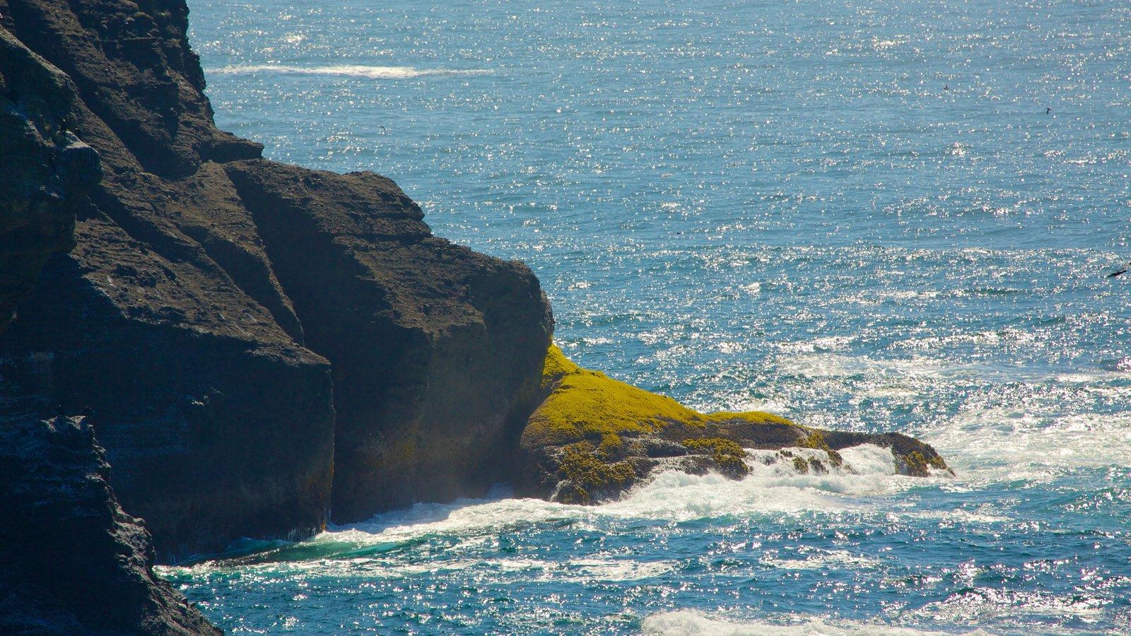 Cabo Flattery mostrando litoral rochoso e paisagens litorâneas