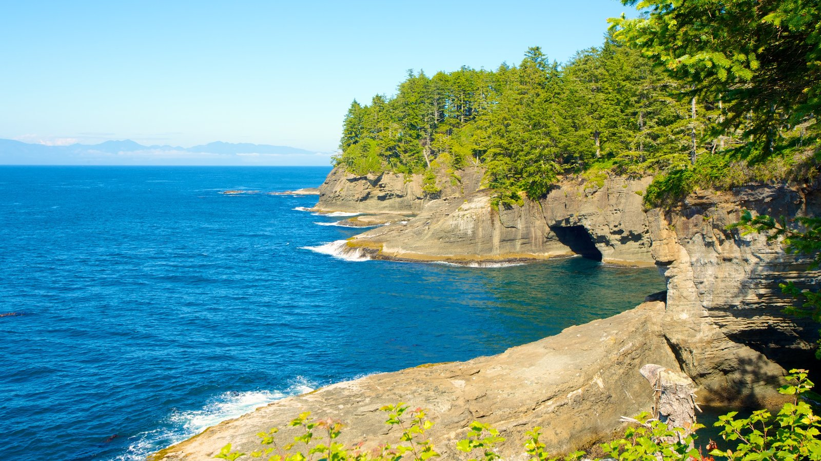 Cape Flattery showing general coastal views, tropical scenes and rocky coastline