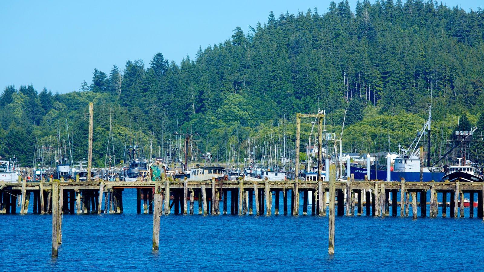Neah Bay caracterizando canoagem, uma marina e uma baía ou porto