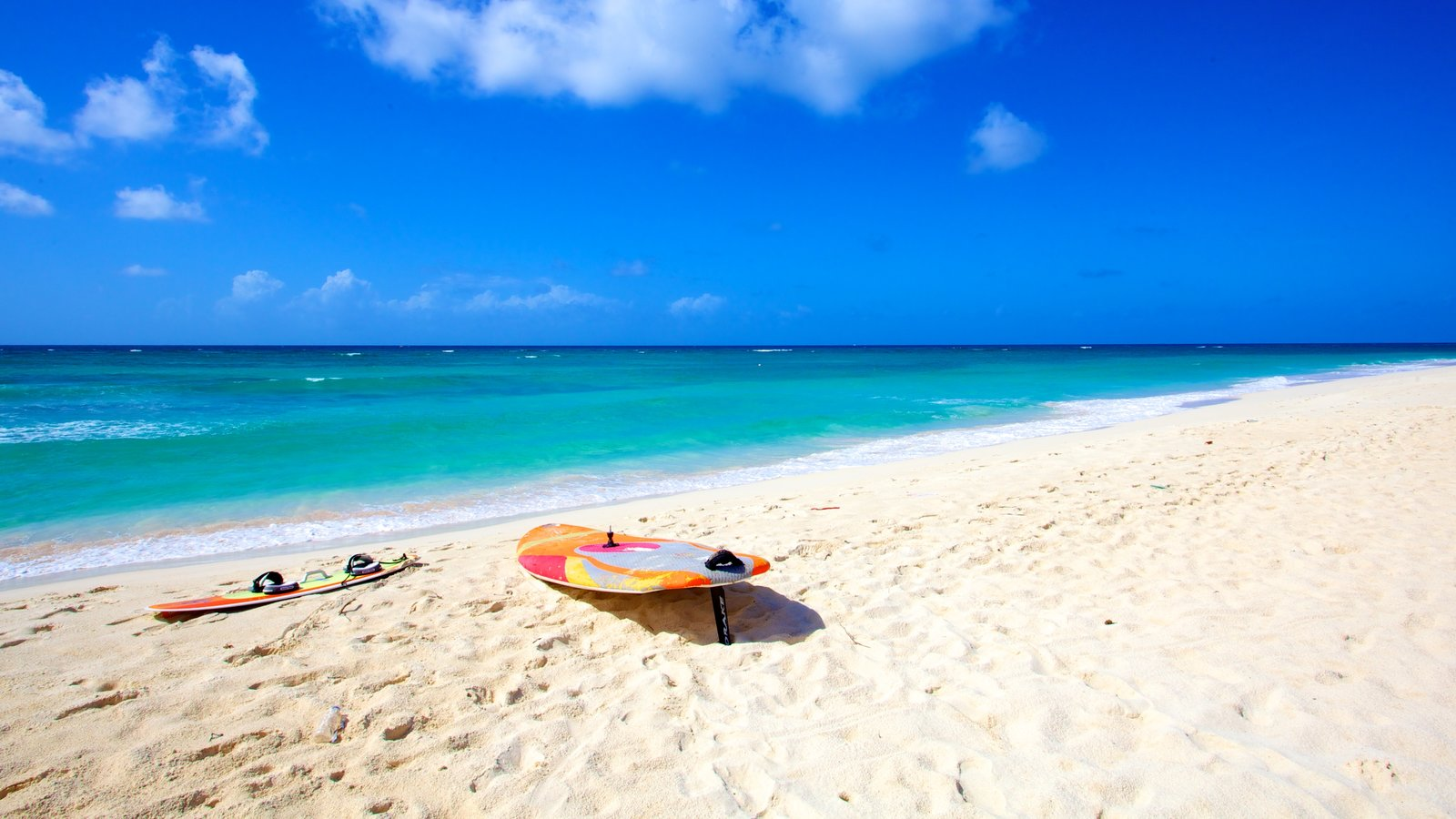 Silver Sands Beach Showing Tropical Scenes Surfing And A