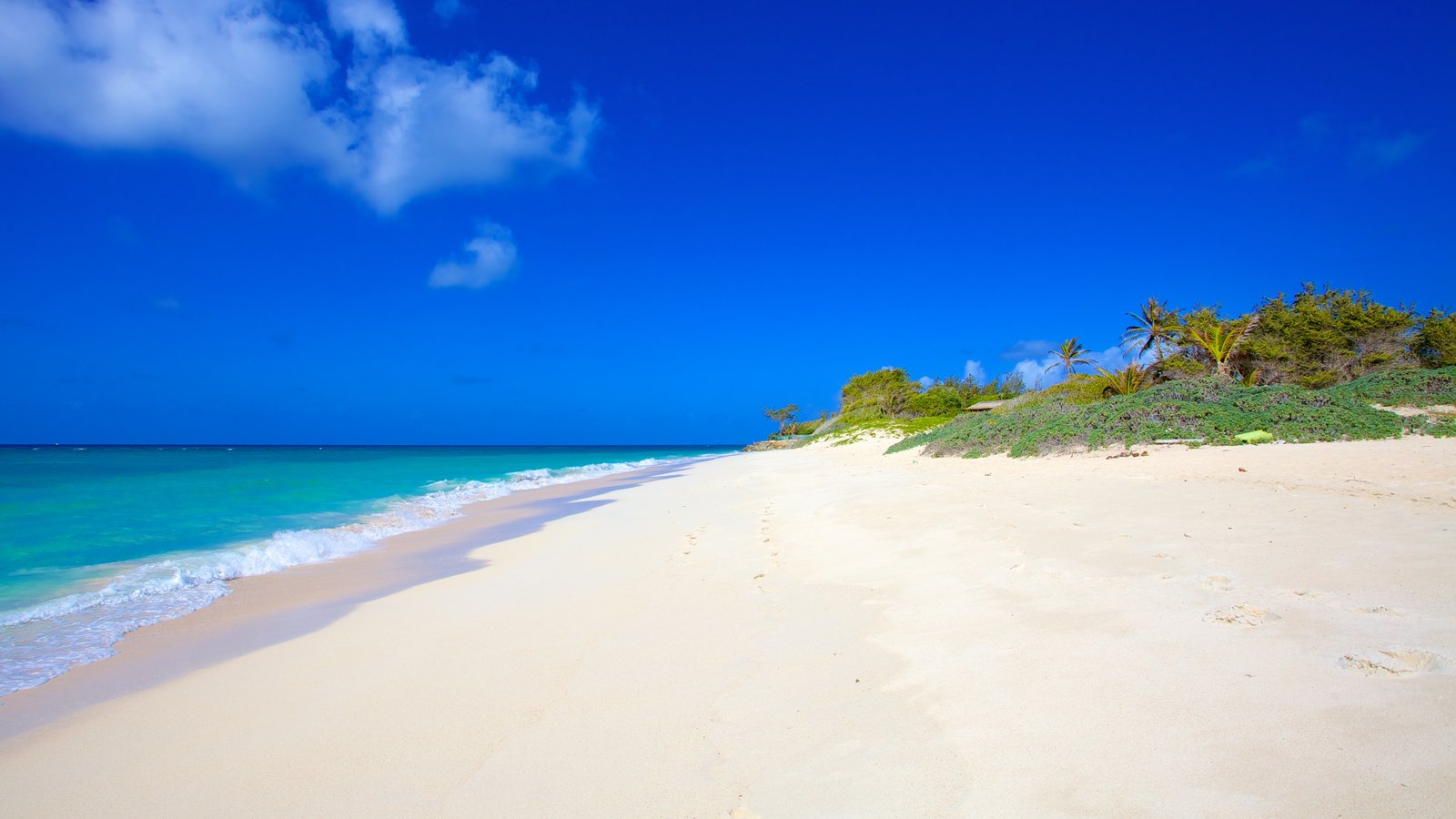 Silver Sands Beach Which Includes Tropical Scenes Landscape Views And A Sandy