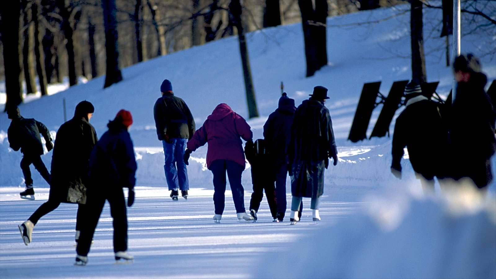 winter pictures view images of montreal