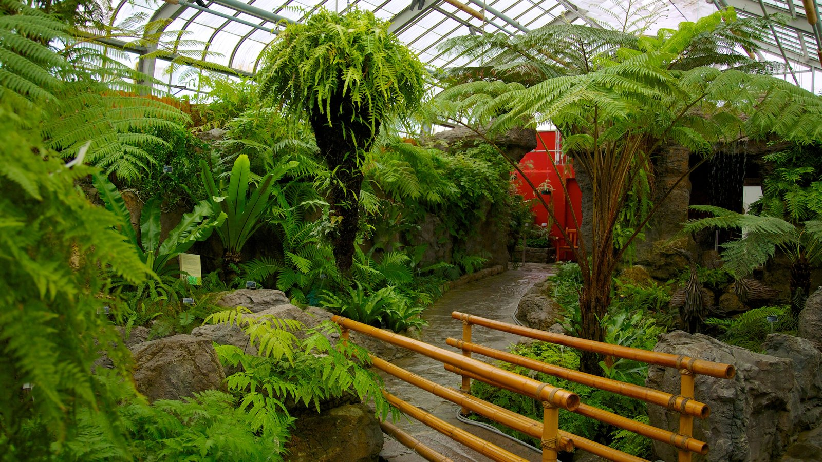 Montreal Botanical Garden Which Includes A Garden And Interior Views