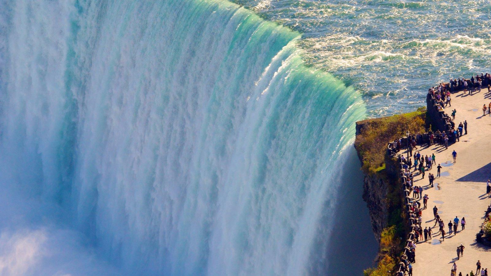 Horseshoe Falls que inclui uma cachoeira, paisagens e paisagem