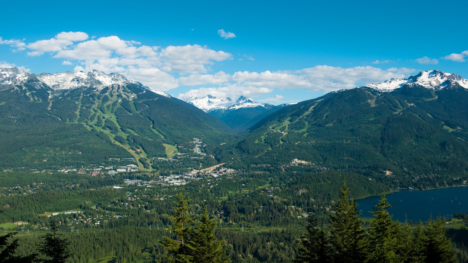 Whistler Blackcomb Ski Resort featuring mountains, tranquil scenes and a small town or village