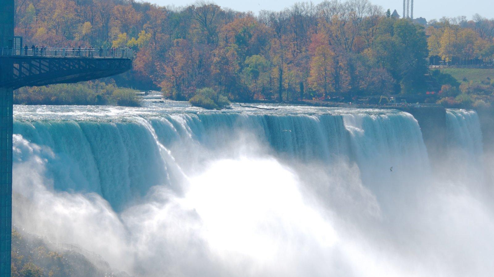 Bridal Veil Falls caracterizando folhas de outono, bungee jump e uma cachoeira