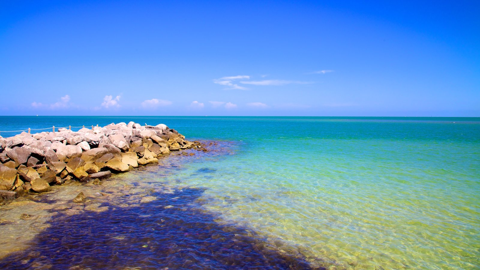 Bill Baggs Cape Florida State Park featuring general coastal views and rugged coastline