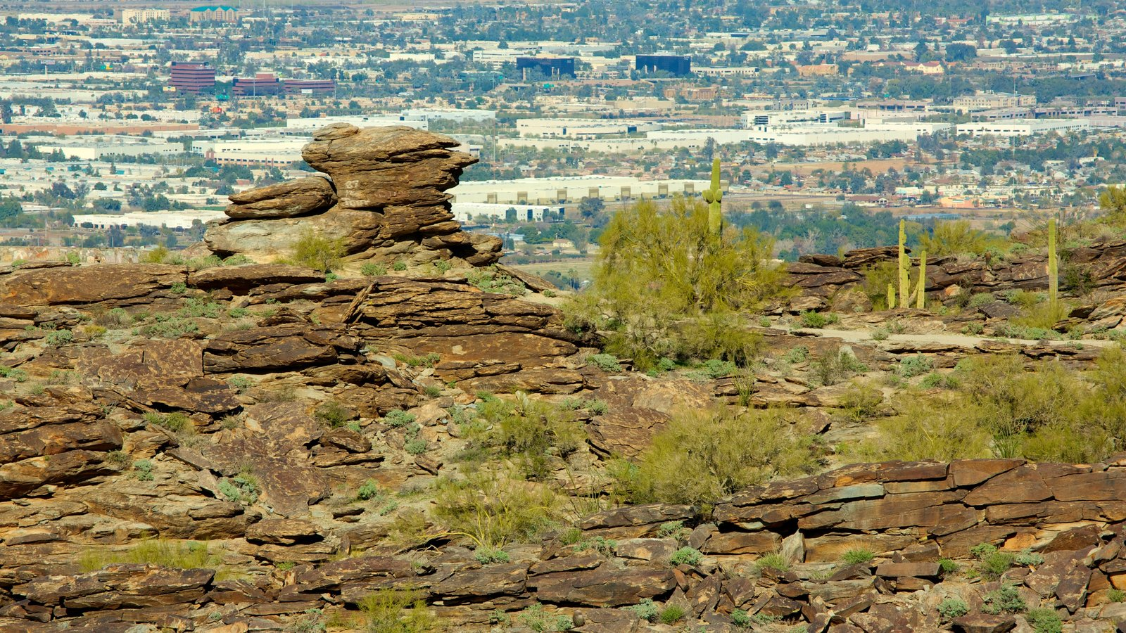 Phoenix which includes a gorge or canyon, landscape views and a city