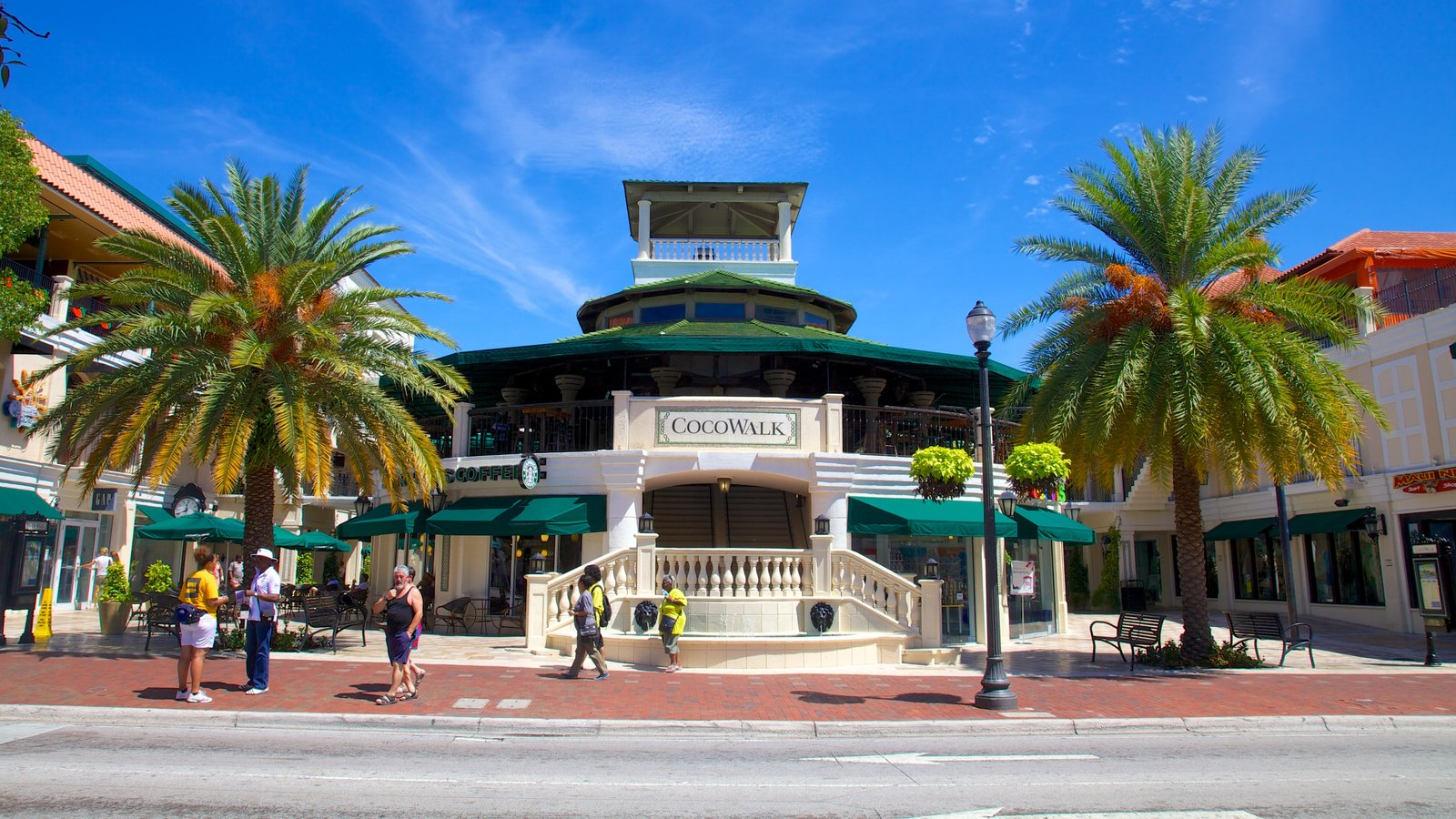 Coconut Grove showing shopping, a city and a square or plaza
