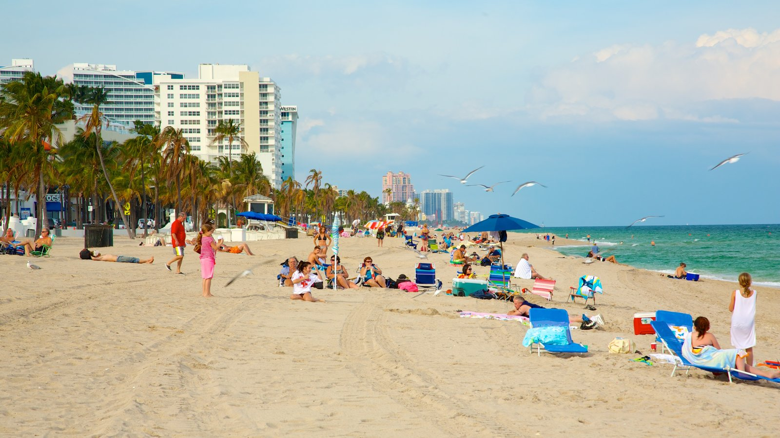 Fort Lauderdale Beach Pictures View Photos  Images Of -7570