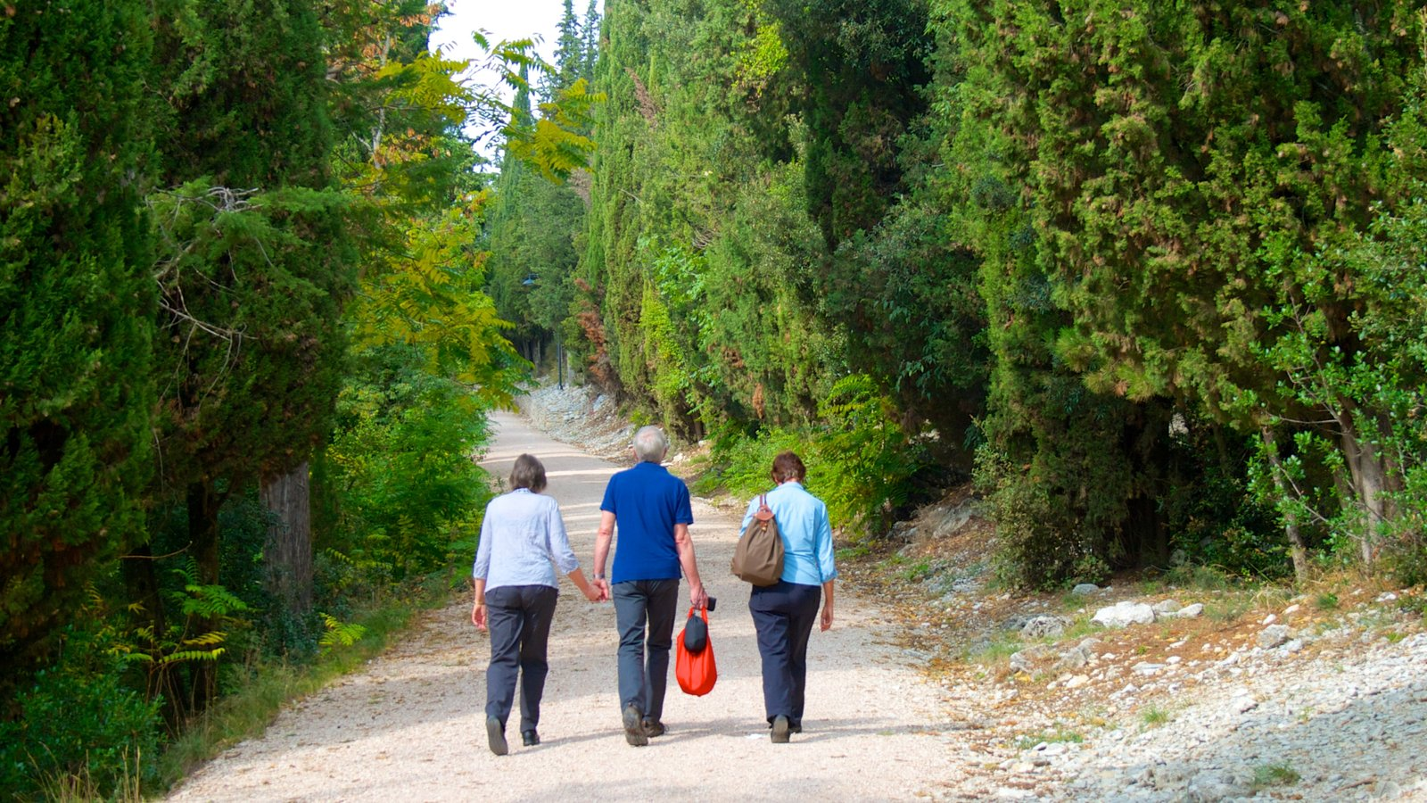 Gubbio which includes hiking or walking and forest scenes as well as a small group of people