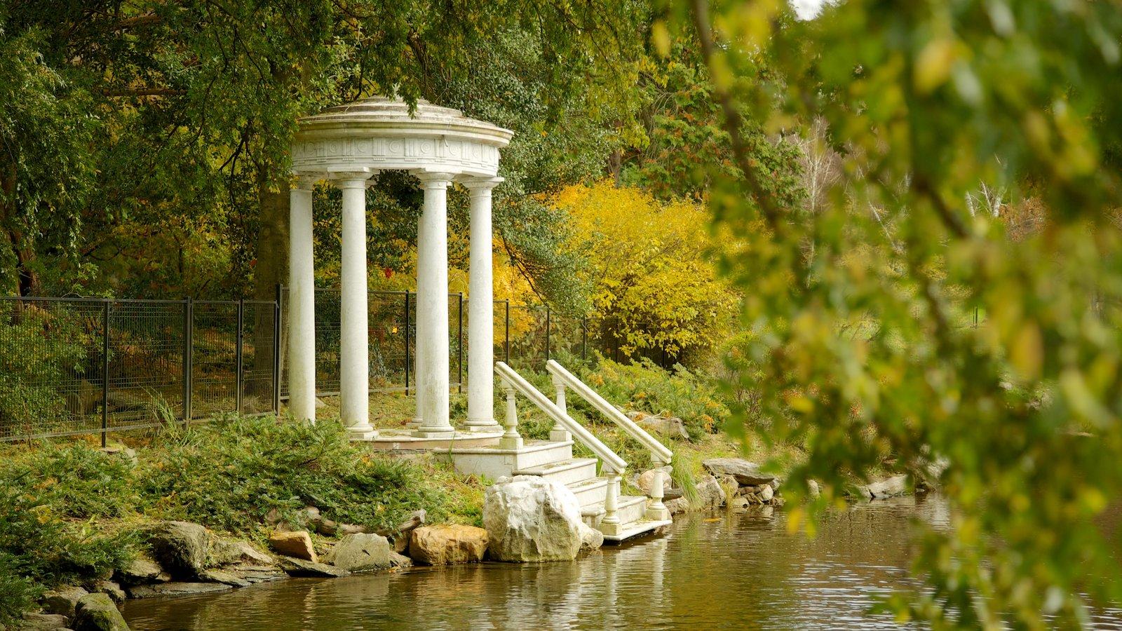 Morris Arboretum mostrando un estanque y un jardín