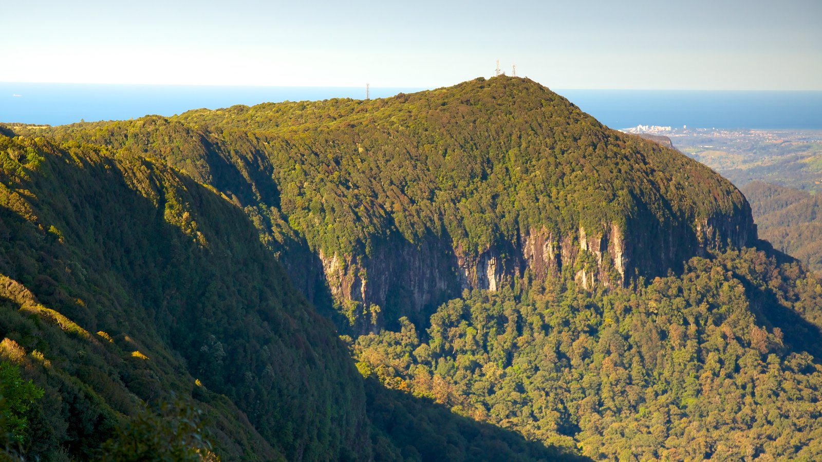Springbrook National Park which includes landscape views and forest scenes