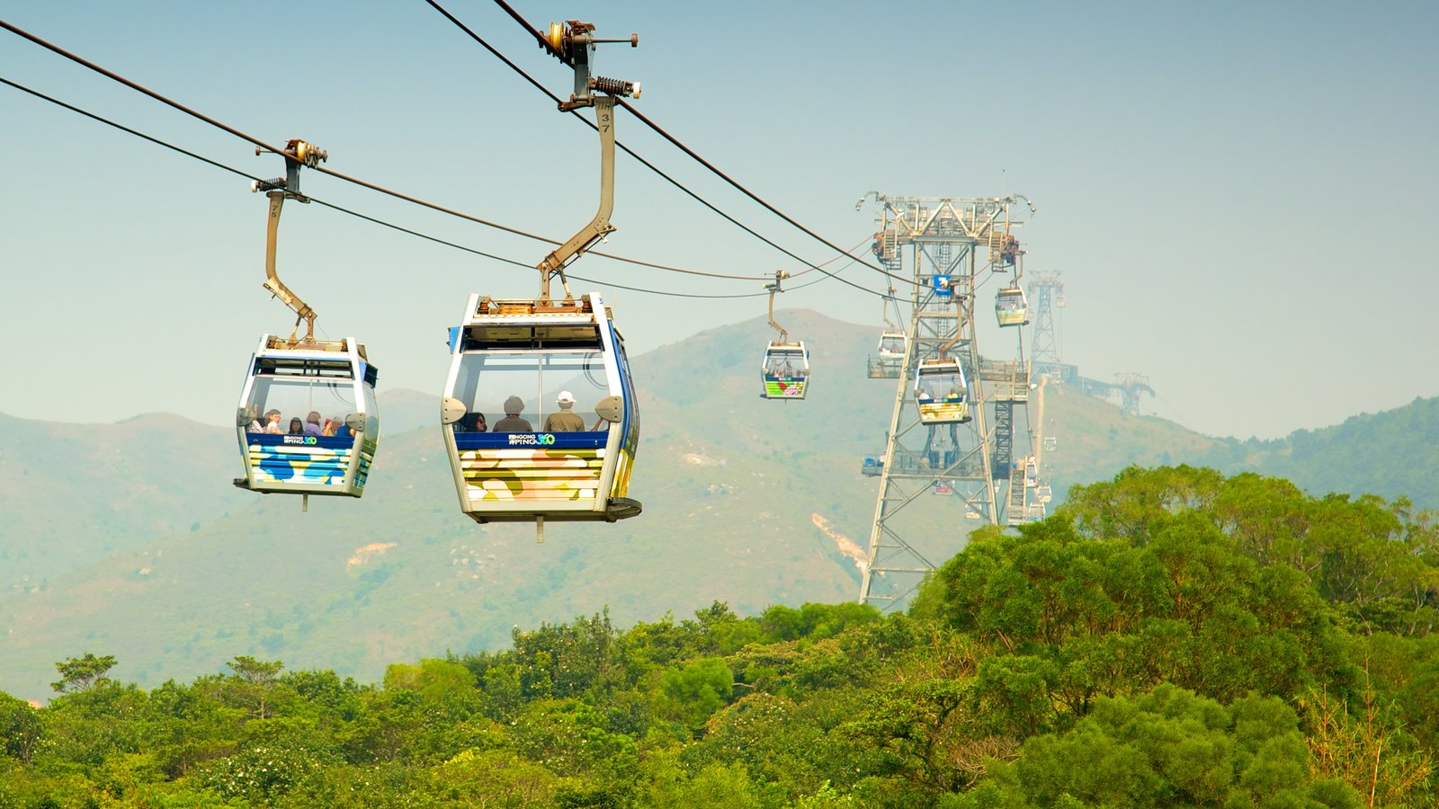 Ngong Ping 360 which includes a gondola and forests