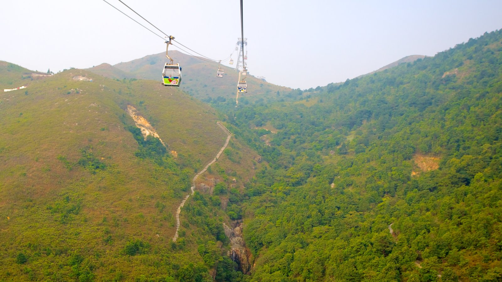 Ngong Ping 360 featuring forests, a gondola and mountains