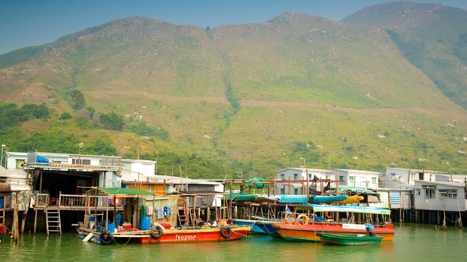 Tai O Fishing Village featuring a small town or village, a river or creek and boating