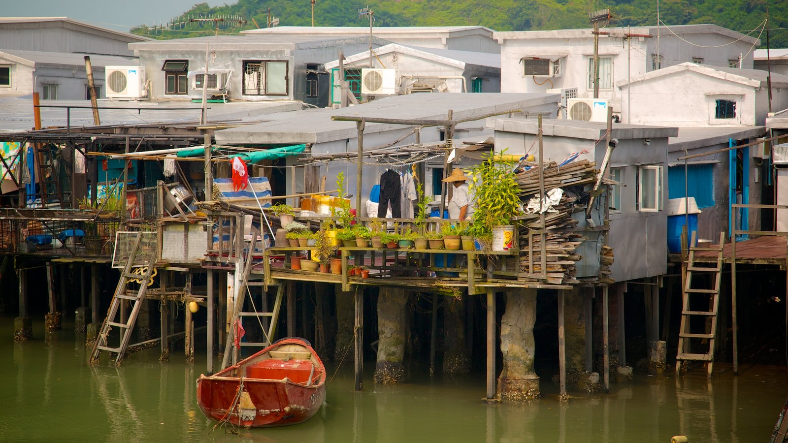 Tai O Fishing Village showing a house, boating and a small town or village