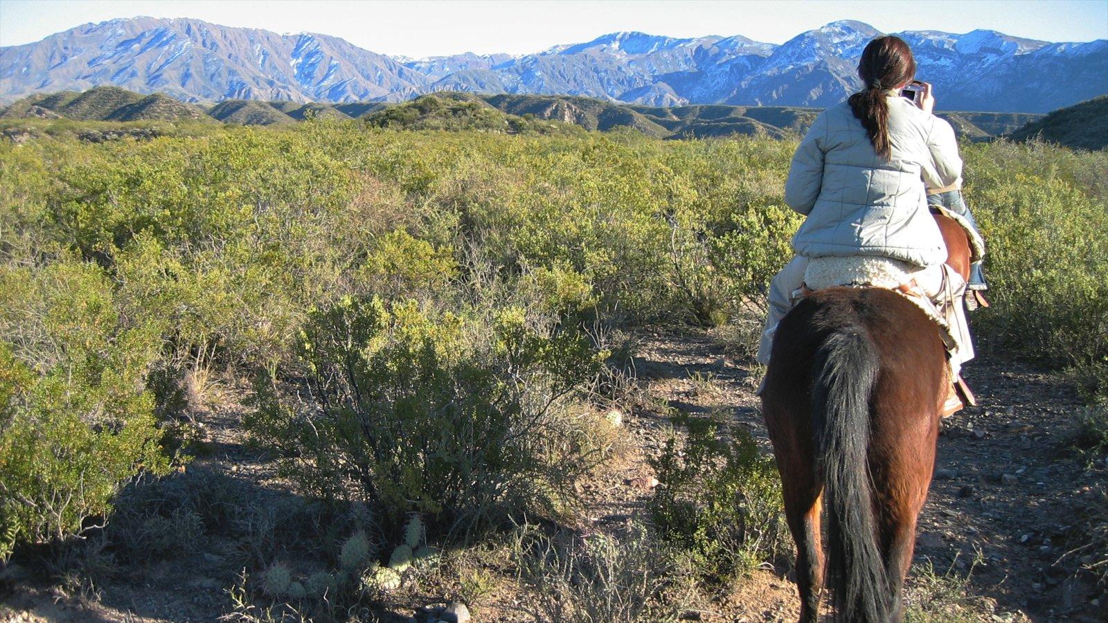 Região Vinícola de Mendoza que inclui cavalgada, montanhas e animais terrestres