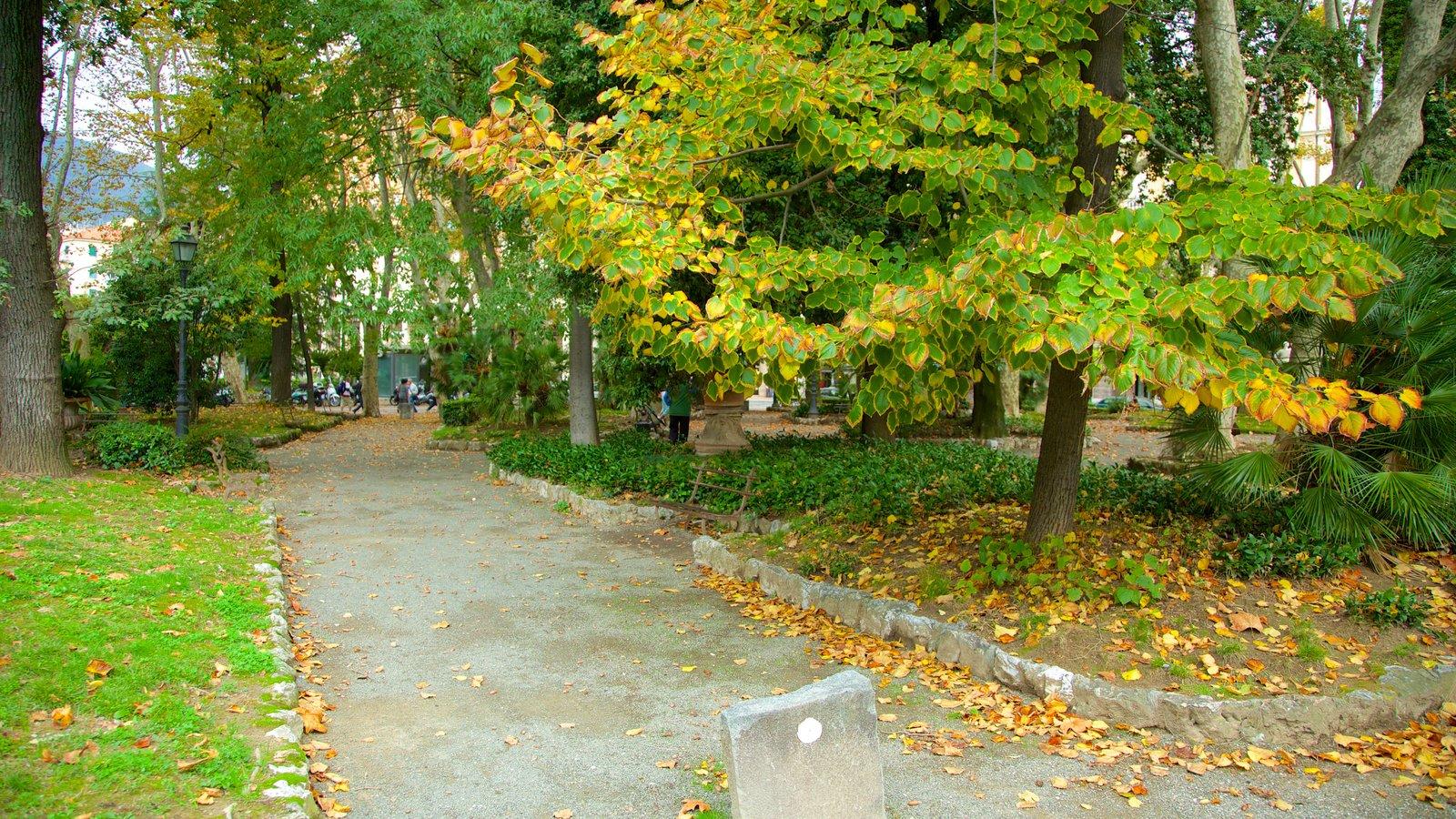 La Spezia que inclui cores do outono e um parque