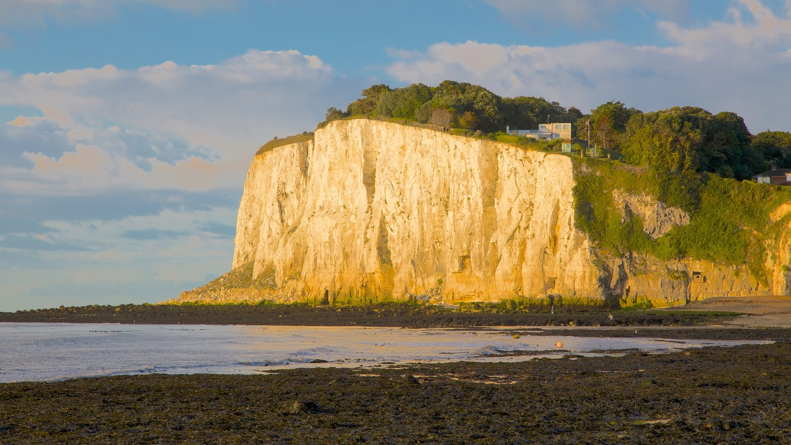 White Cliffs of Dover showing a pebble beach, mountains and landscape views