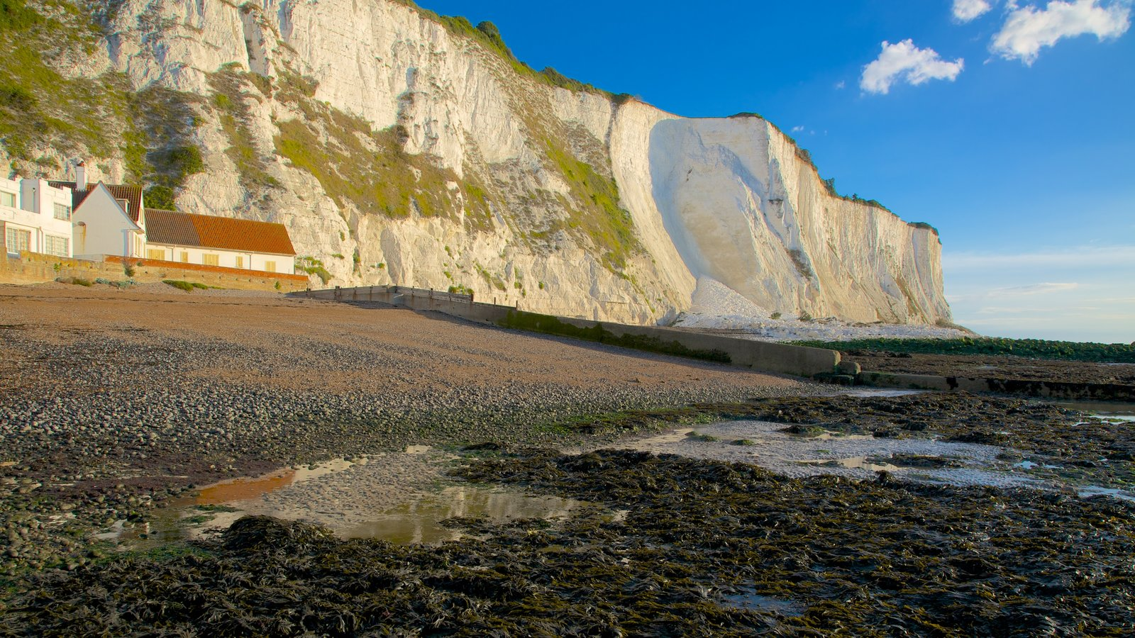 Dover showing landscape views, rugged coastline and a house