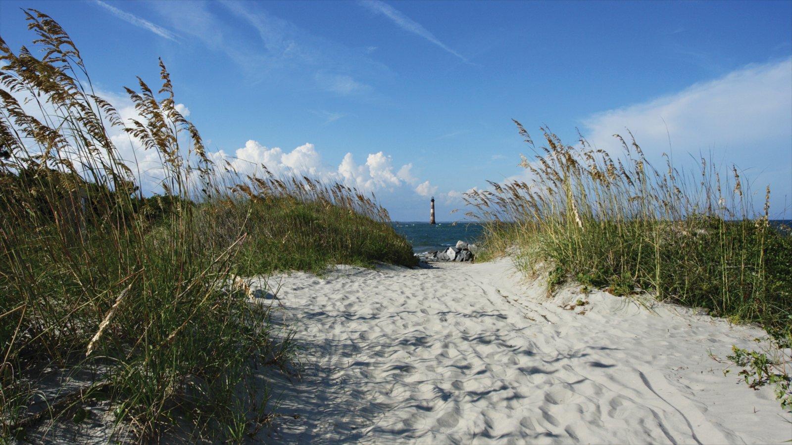 Folly Beach que inclui uma praia de areia e paisagens litorâneas