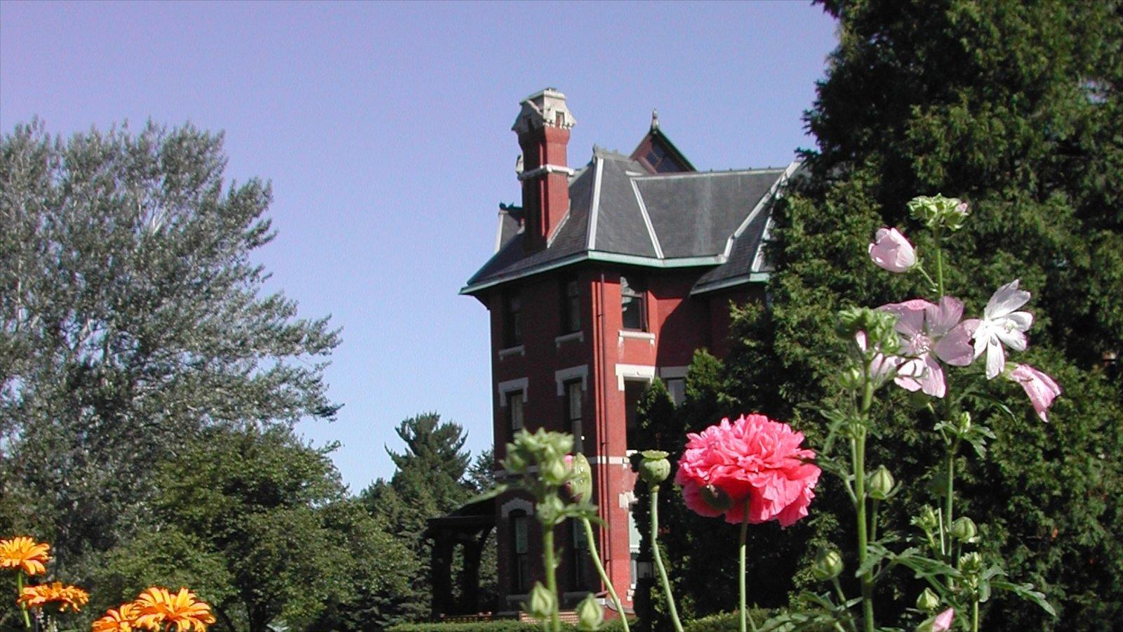 Cedar Rapids que incluye flores y una casa
