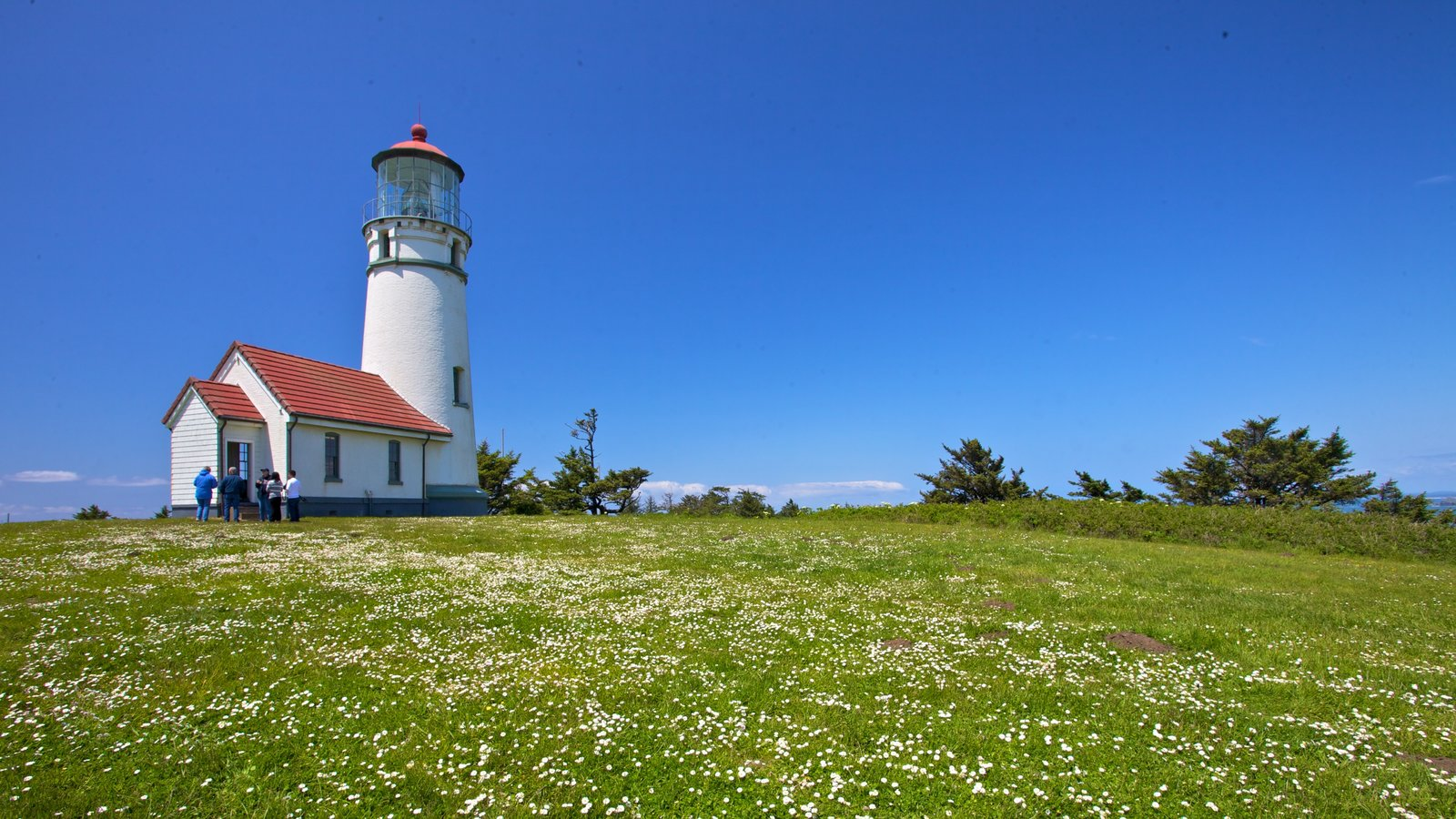 Oregon Coast showing a lighthouse and tranquil scenes