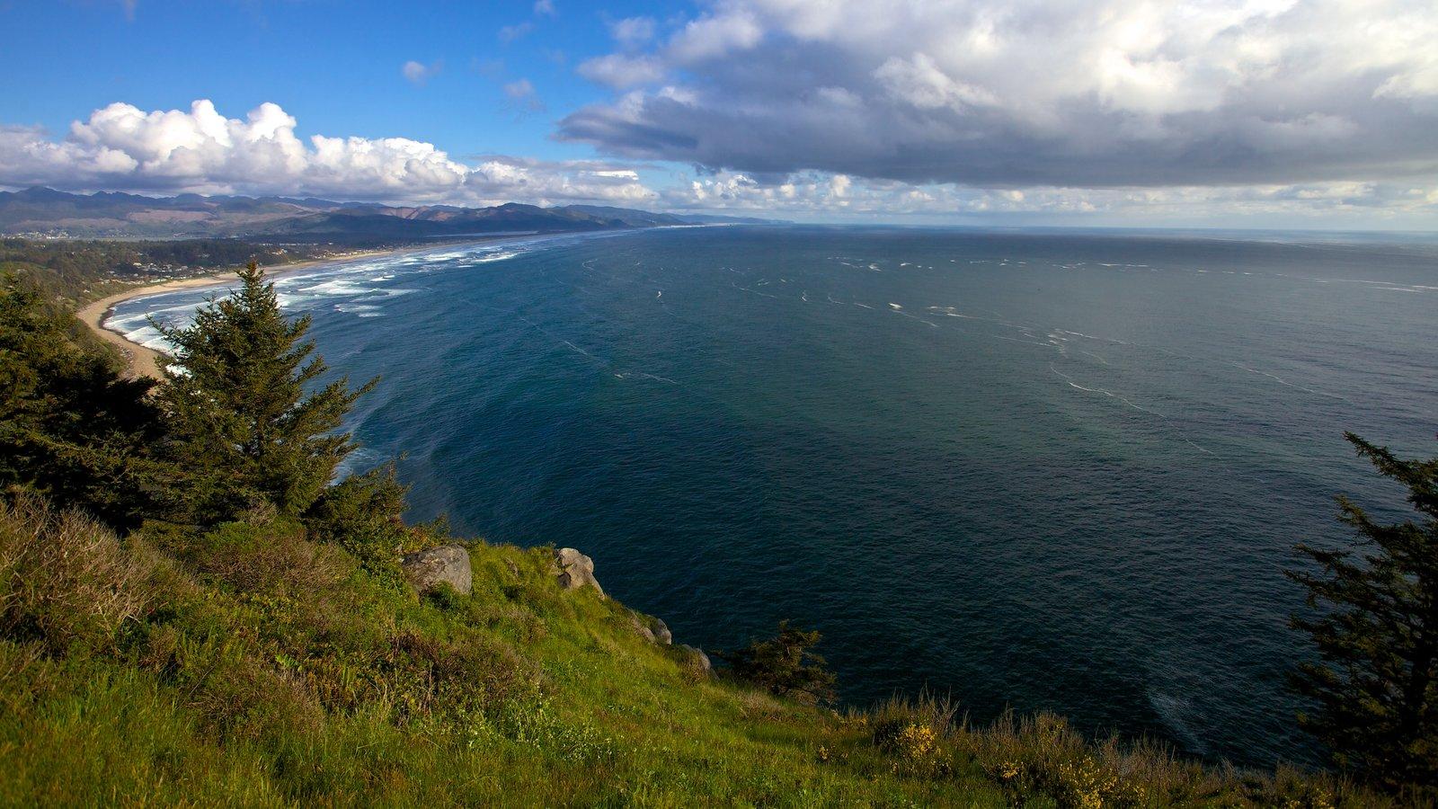 Newport mostrando vistas generales de la costa, vistas de paisajes y una playa de arena