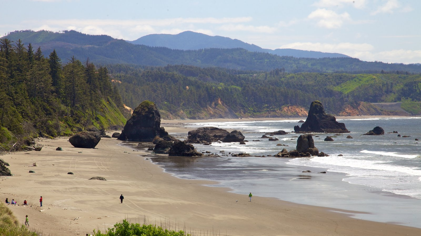 Port Orford featuring general coastal views, landscape views and a sandy beach