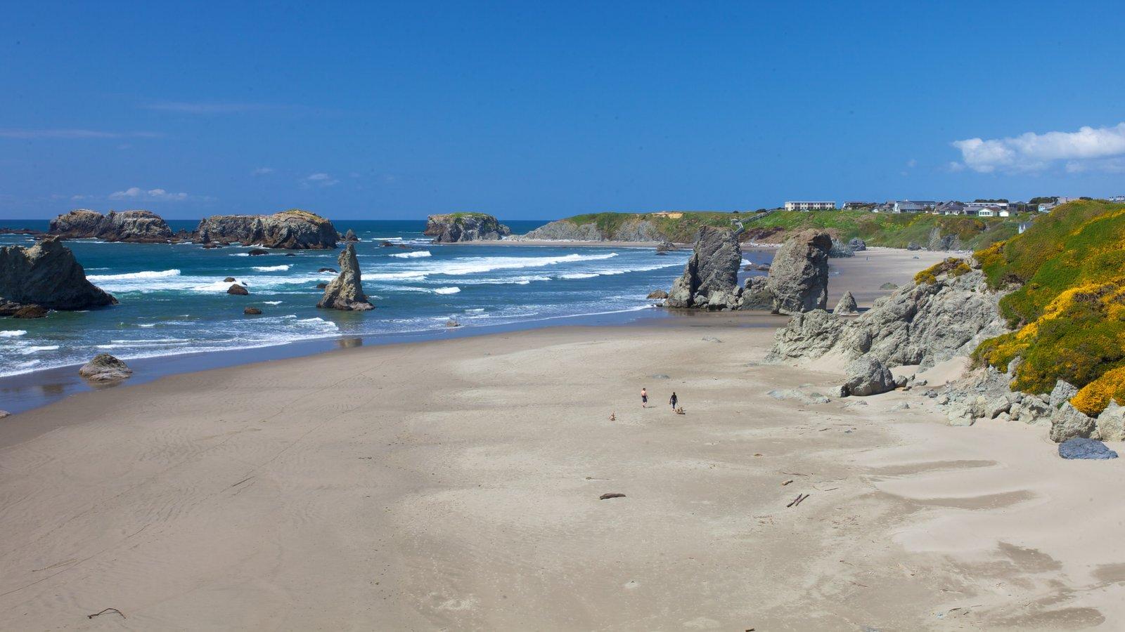 Bandon mostrando paisagem e uma praia