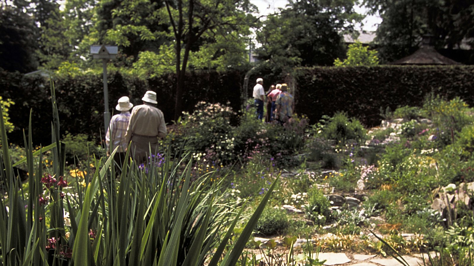Unionville showing flowers and a garden as well as a small group of people