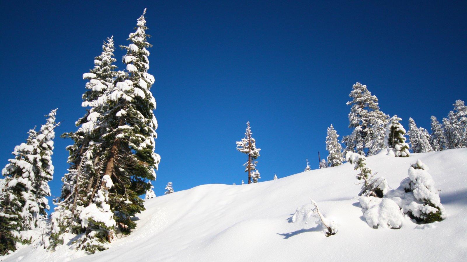 Yosemite Valley caracterizando neve
