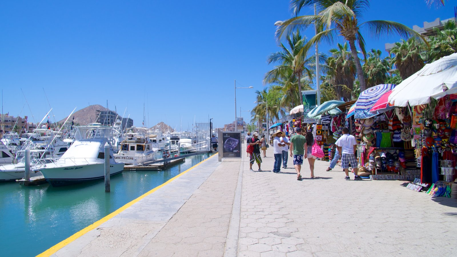 cabo san lucas chatrooms Mexico webcams the united mexican states enjoy over 6,000 miles of beautiful  live views over beautiful medano beach in spectacular cabo san lucas, mexico.