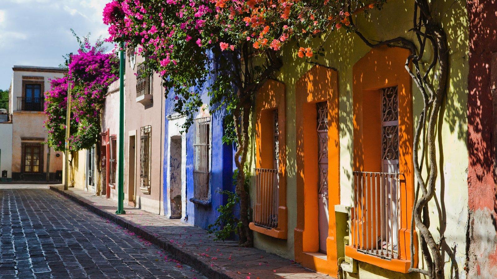 Querétaro ofreciendo escenas urbanas, flores y patrimonio de arquitectura