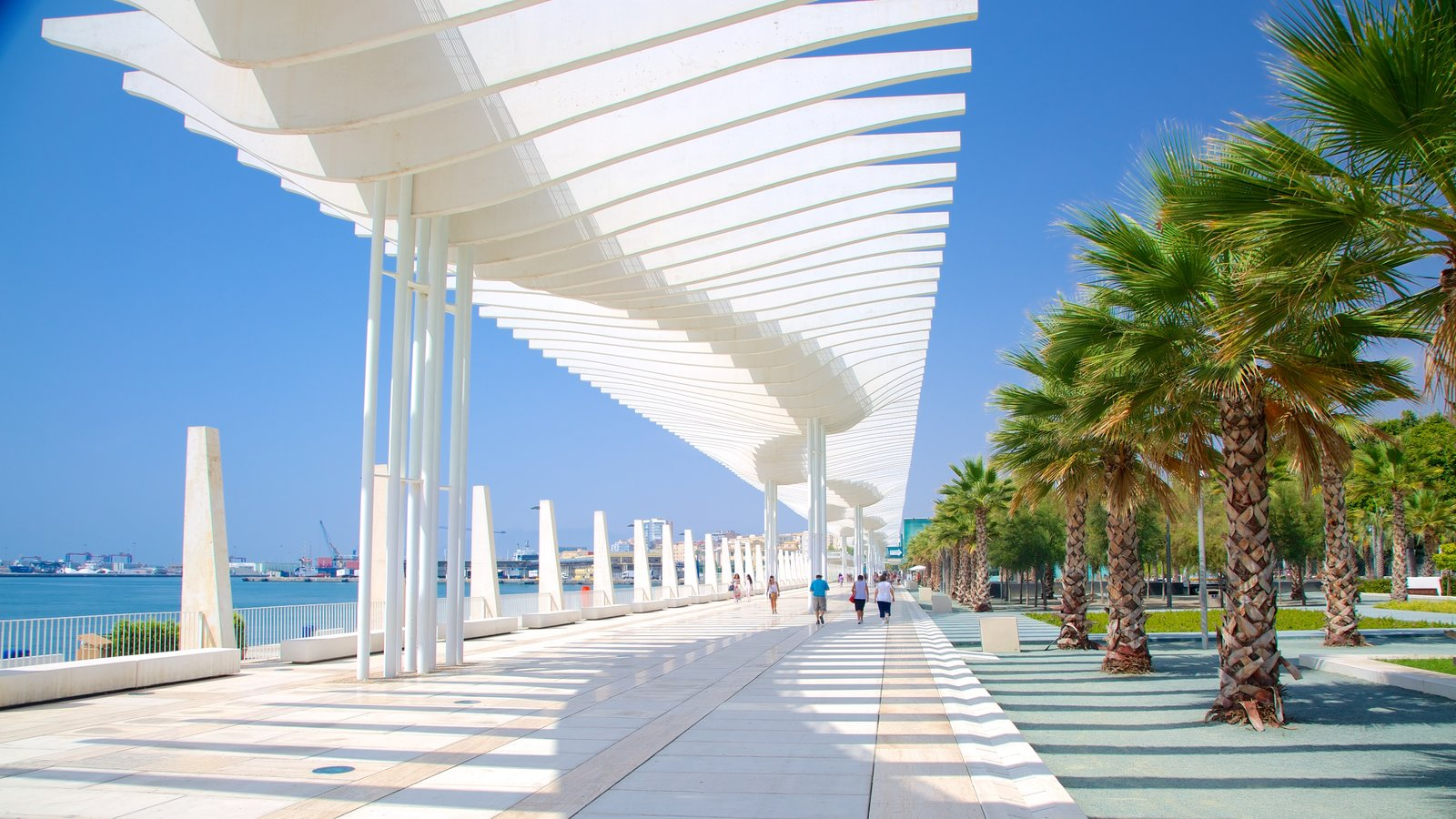 Malaga showing street scenes, modern architecture and tropical scenes