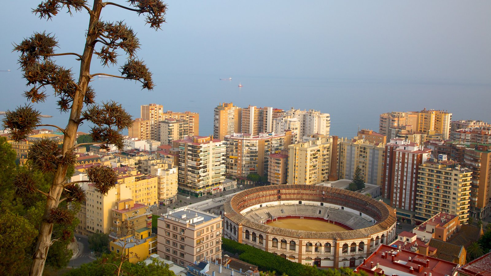 Gibralfaro Castle which includes central business district, a city and heritage architecture