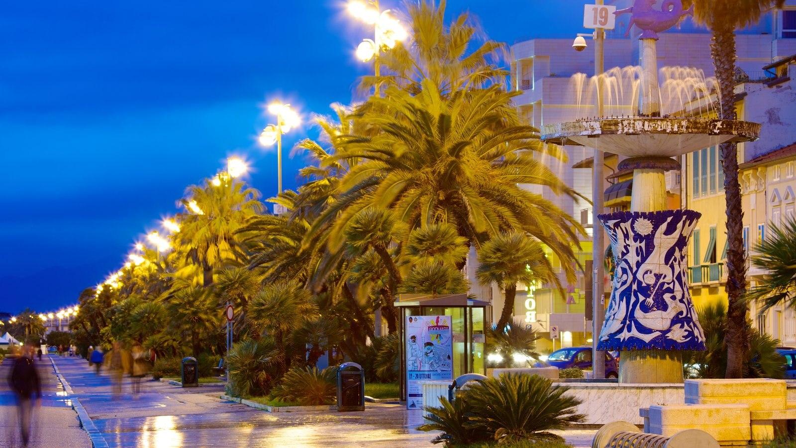 Viareggio which includes tropical scenes, street scenes and night scenes