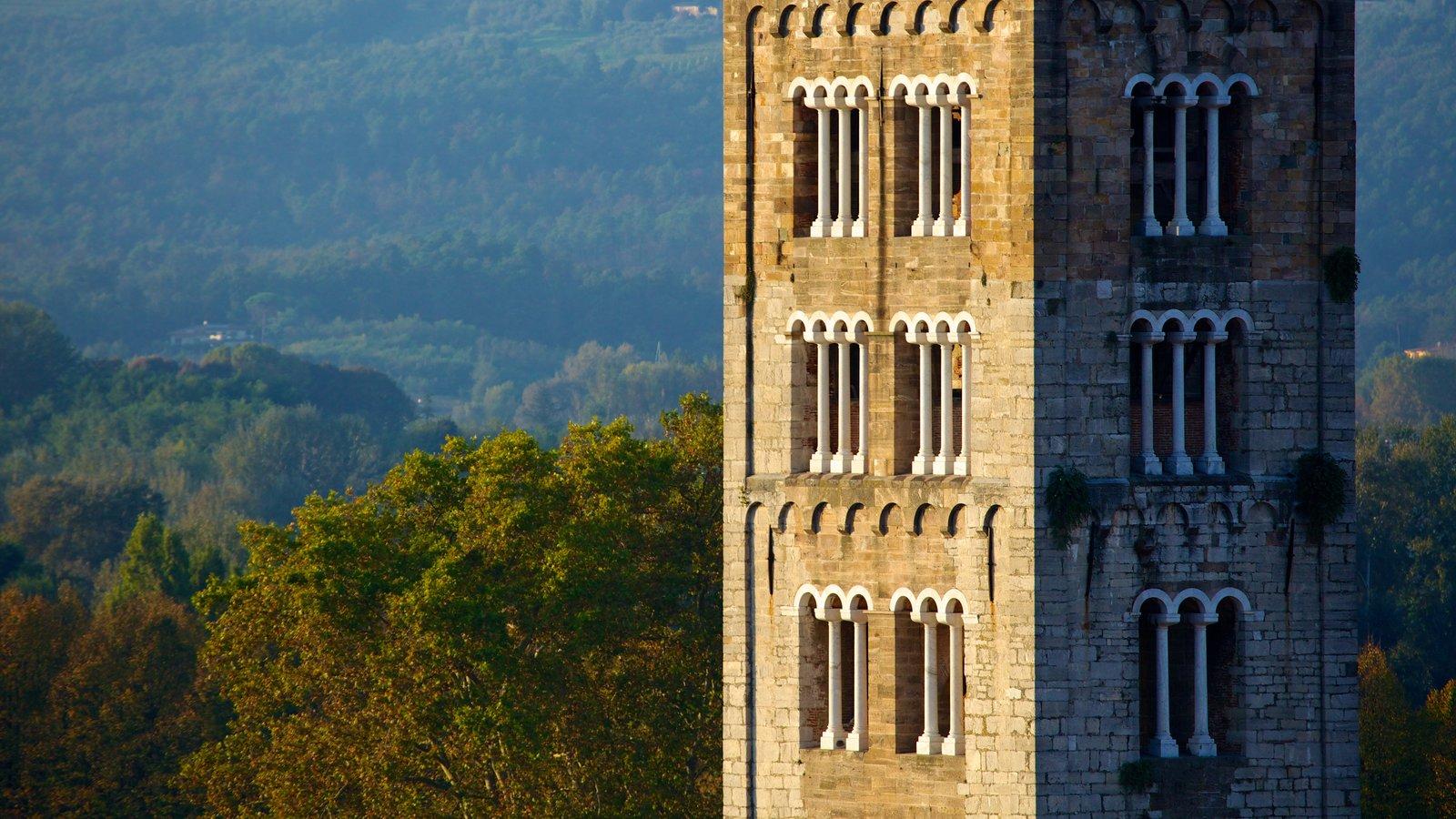 Torre Guinigi caracterizando arquitetura de patrimônio e cenas de floresta