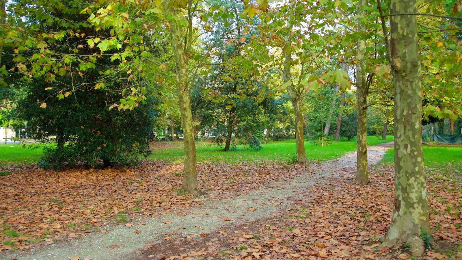 Pineta di Ponente featuring a garden and autumn leaves