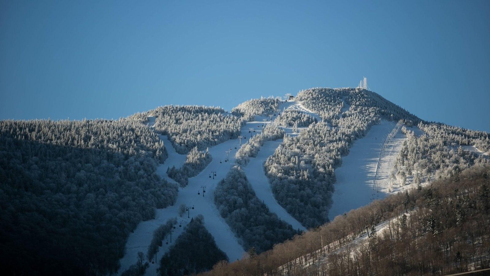 Killington Ski Resort que incluye escenas forestales, nieve y montañas