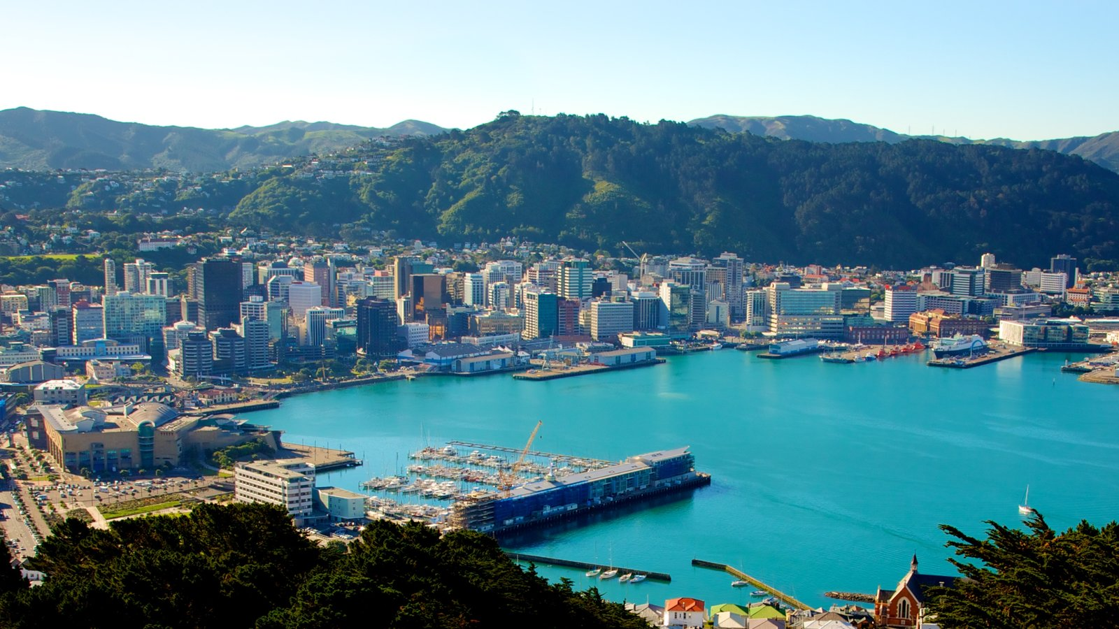 Wellington showing cbd, a city and a high rise building
