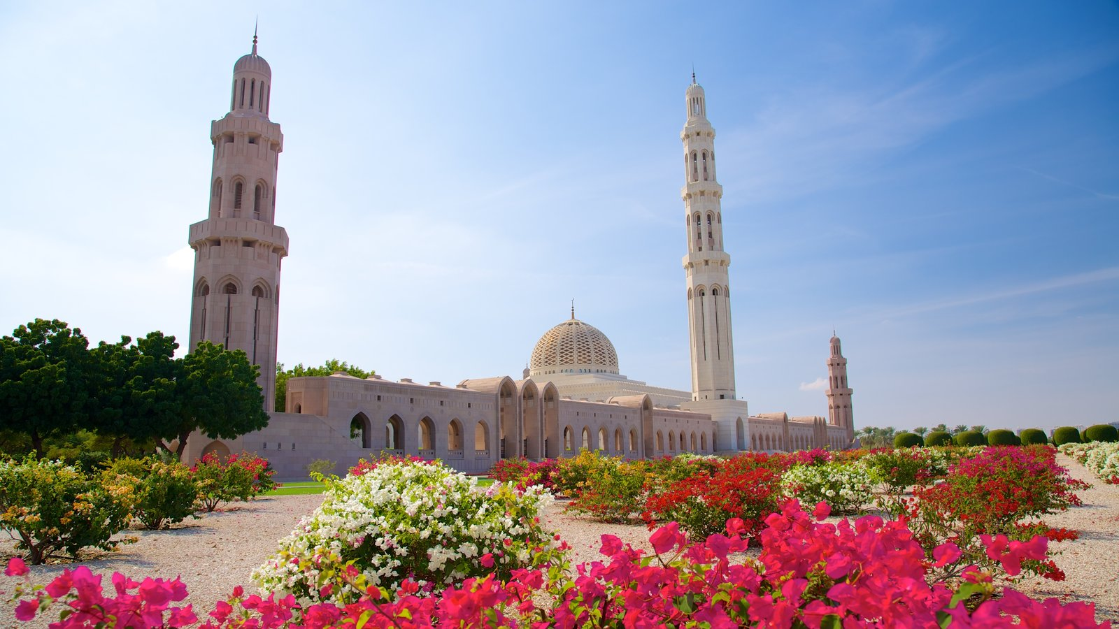 Muscat featuring religious elements, a mosque and flowers