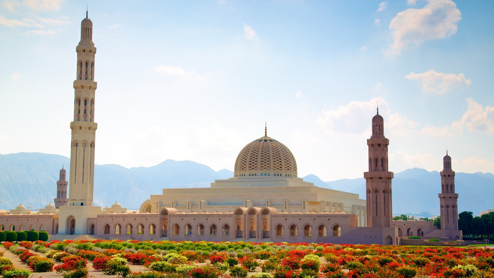 Muscat showing a garden, a mosque and heritage architecture