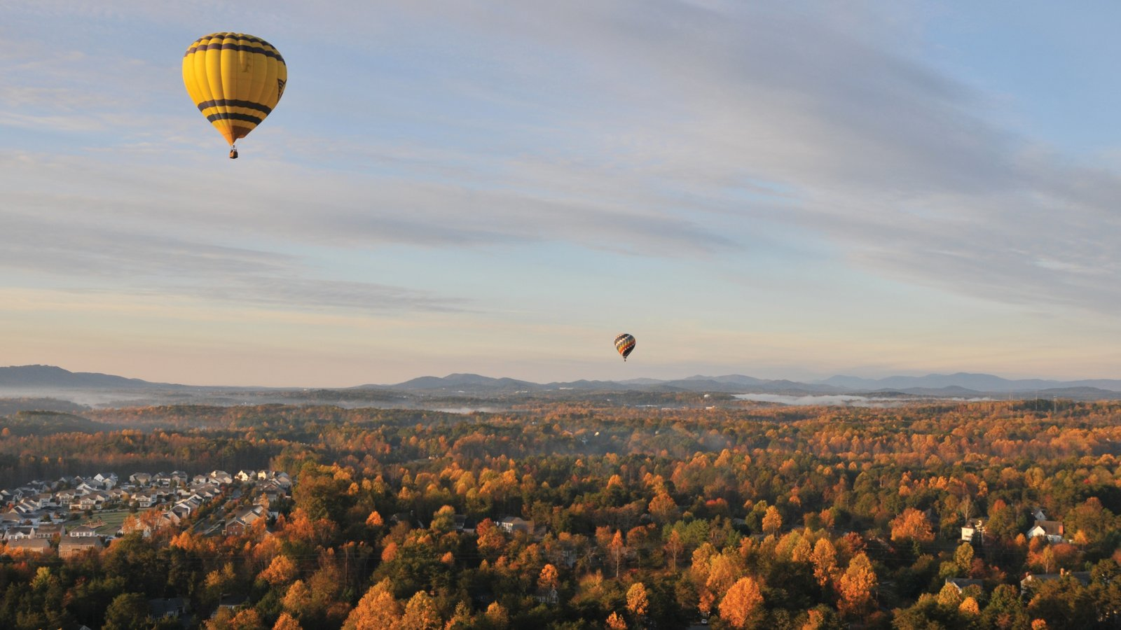 Charlottesville showing autumn leaves, landscape views and forest scenes