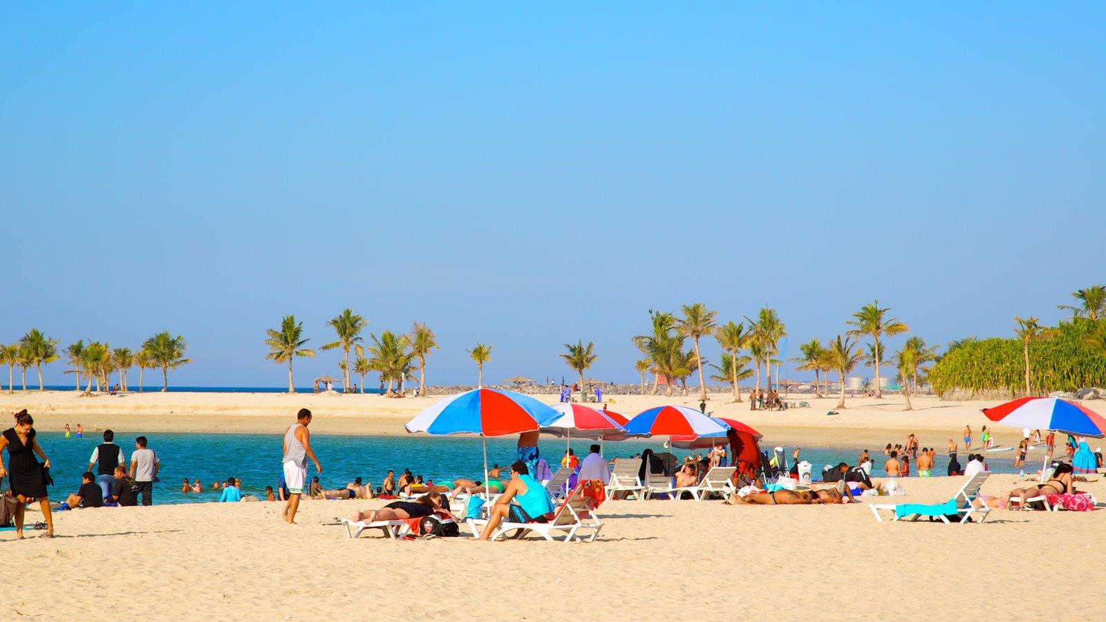 Dubai Emirate showing a beach, tropical scenes and general coastal views
