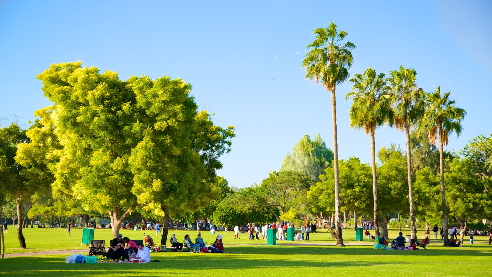 Safa Park which includes a garden and picnicing as well as a large group of people