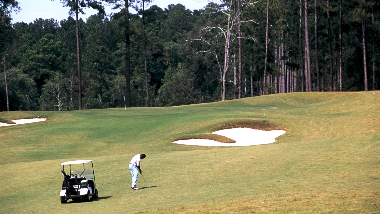 Augusta which includes forest scenes and golf as well as an individual male