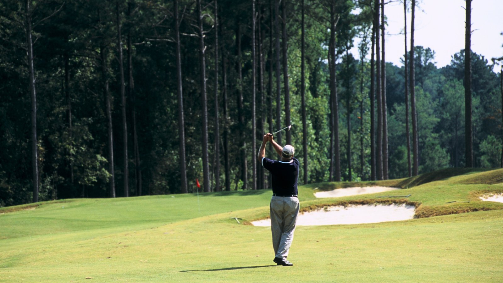 Augusta featuring forests and golf as well as an individual male
