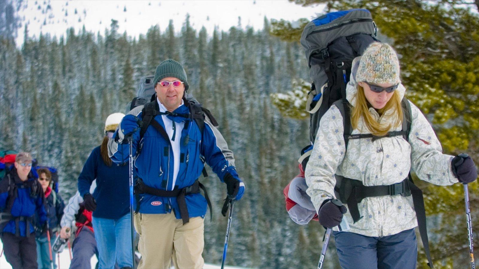 Vail Ski Resort que inclui esqui cross-country assim como um pequeno grupo de pessoas